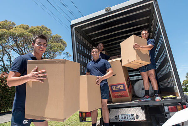 aucklands best moving company