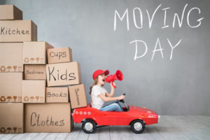 best moving company auckland
