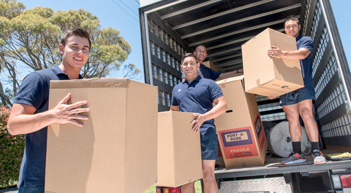 furniture movers remuera